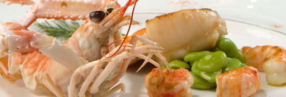 Scallops and Langoustines, broad beans and saffron hollandaise